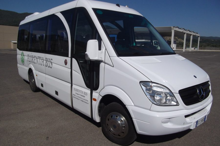 MINIBUS AND MINIVAN / FROM 6 TO 28 SEATS